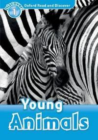 Young Animals Level 1